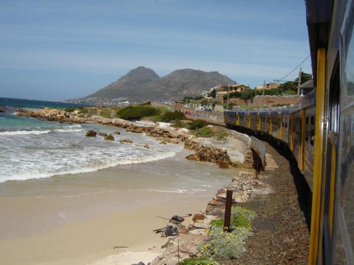 TRAIN Danger Beach.jpg